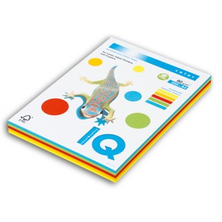 IQ Color Kopierpapier A4 5 x 20 Blatt 160 g/m² Mix intensiv-bunt