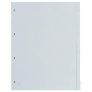 REXEL Register PP 12-teilig mit Fenstertaben grau