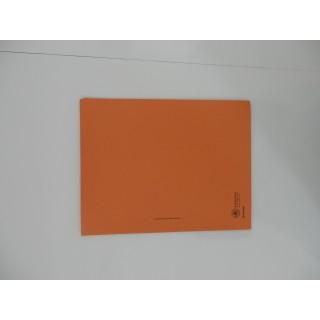 PAGRO Flügelmappe Karton A4 orange