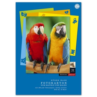 EDITION DÜRER Fotokarton A3 10 Blatt mehrere Farben