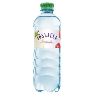 VÖSLAUER Balance Apfel-Cranberry PET-Flasche 0,5 Liter