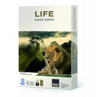 LIFE trend Kopierpapier 500 Blatt A4 80 g/m² Recycling weiß