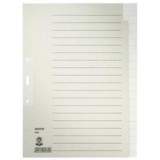 LEITZ Register 6096 A4 blanko 20-teilig grau