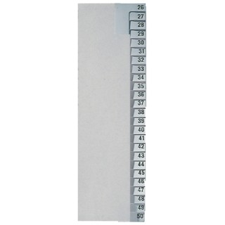 LEITZ Register 1382 A4 Papier 26-50 Taben grau