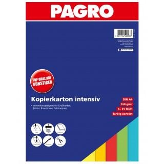 PAGRO farbiges Kopierpapier A4 160g 125 Blatt intensiv
